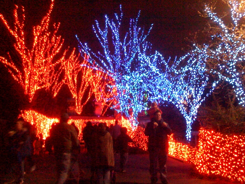 Behold the awesomeness that is Portland's Zoo Lights