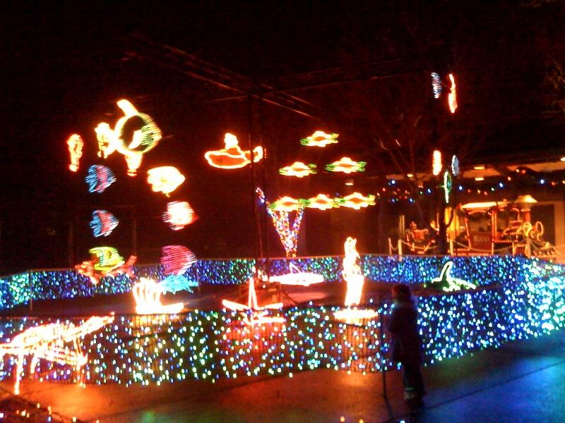 Portland Zoo Lights rules