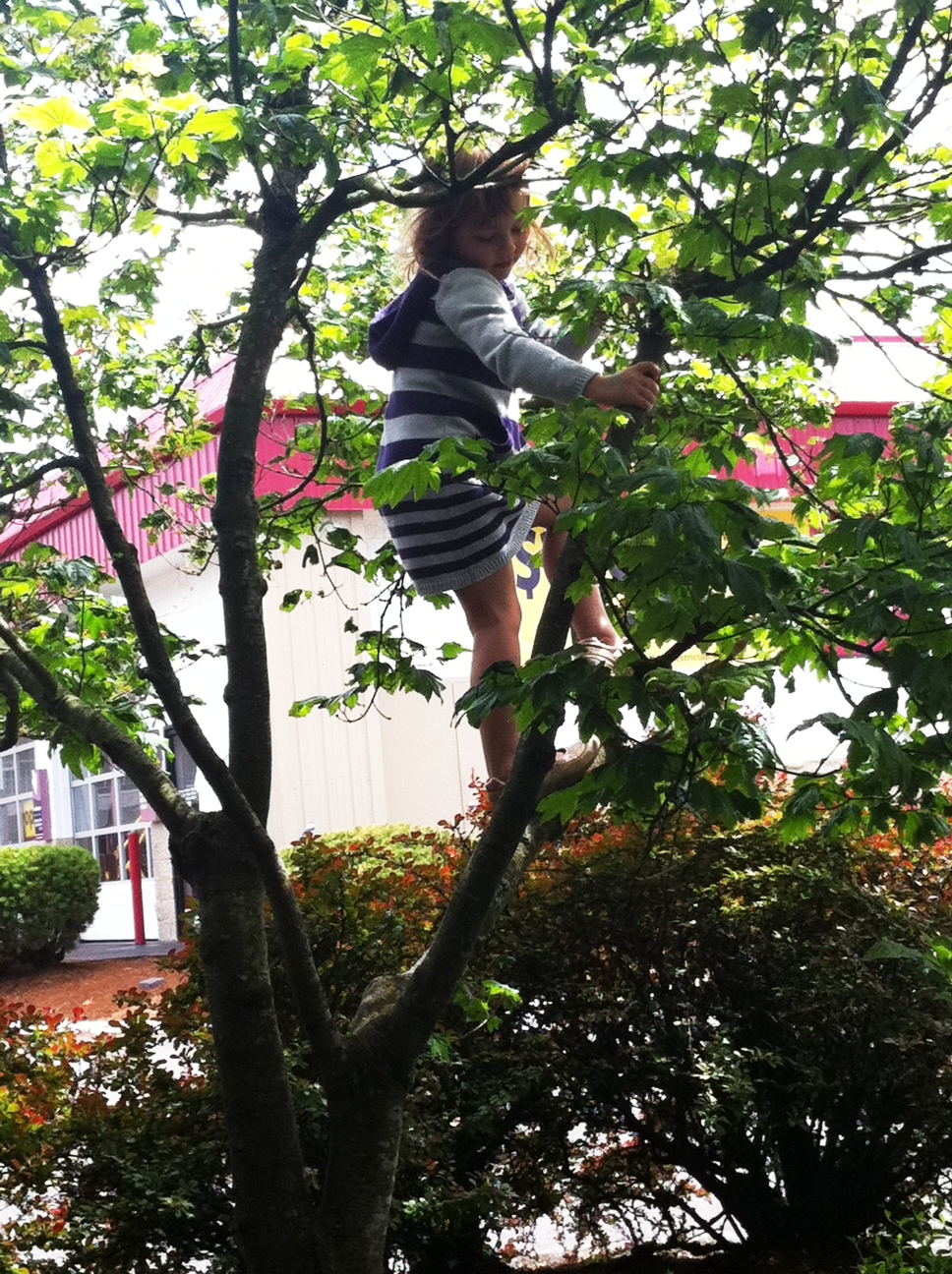 At the car wash, and Evelyn climbs up a tree