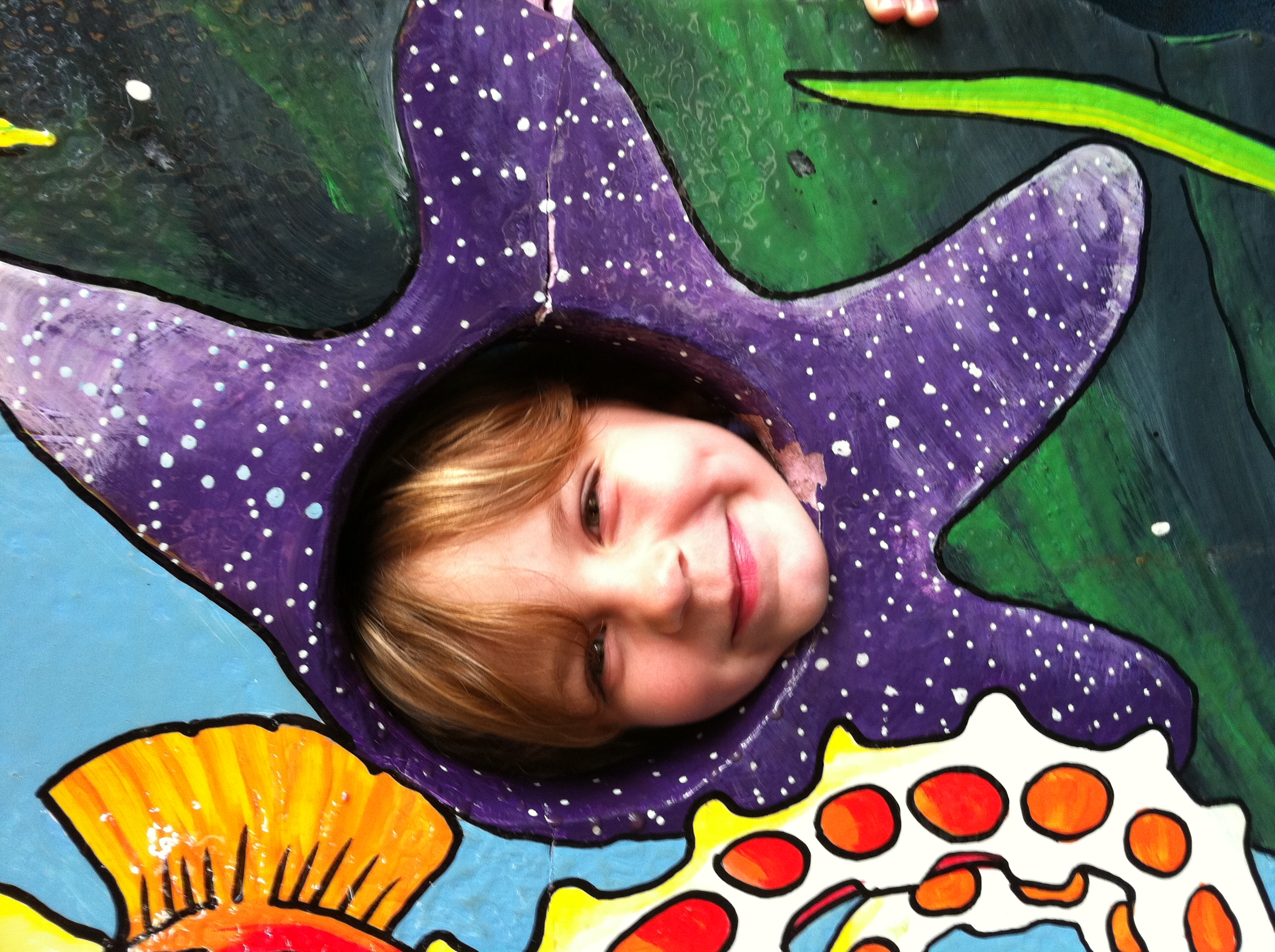 Evelyn has become a very happy purple starfish!