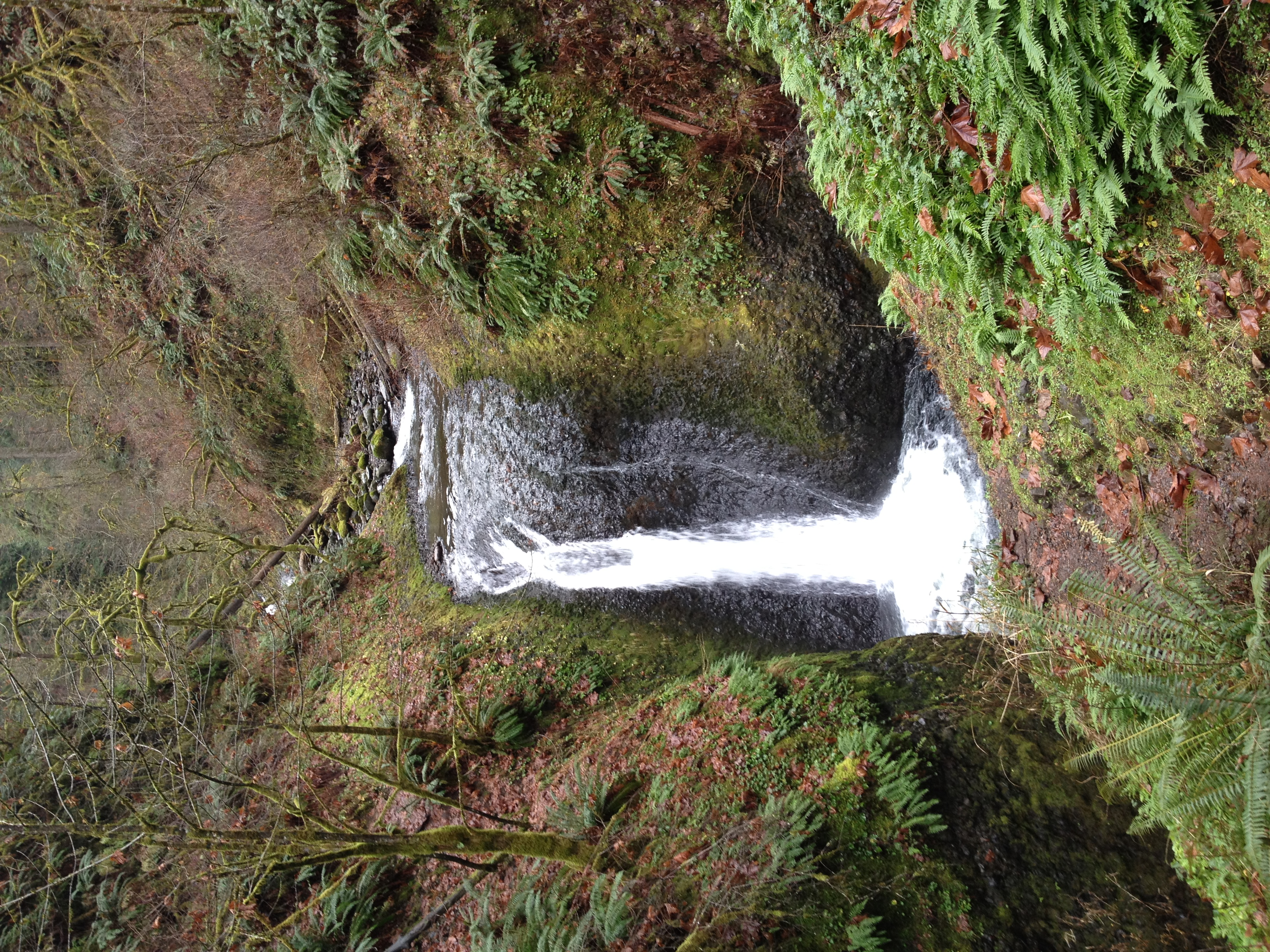A hike in the beautiful Gorge continues the holiday merriment