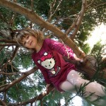 My girl amid the branches, encore